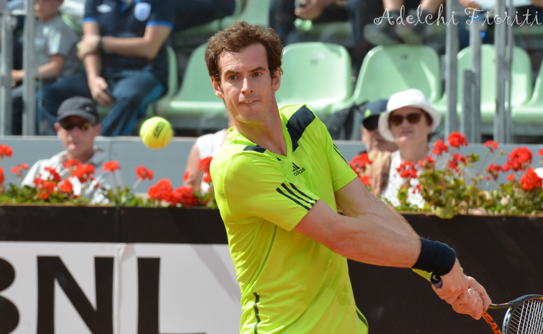 murray_andy_roma_2014_2